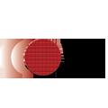 logo_ftdi